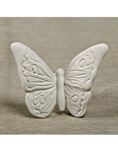 Farfalla piccola